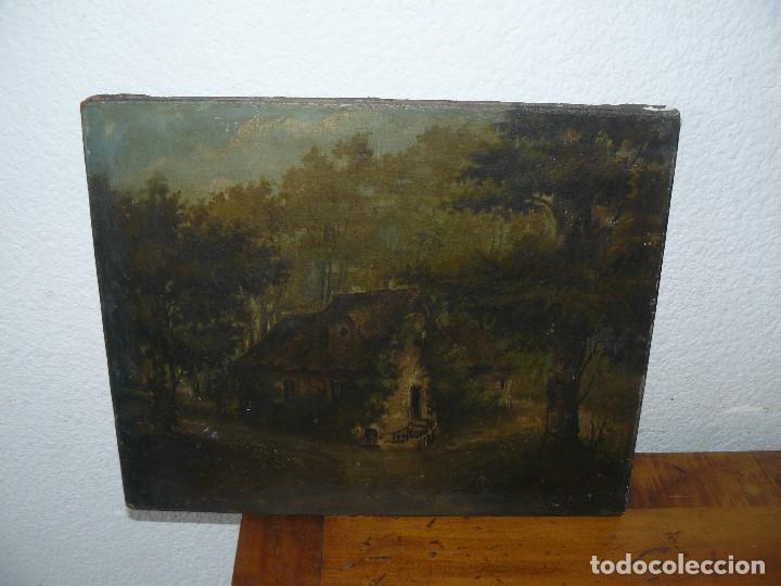 Arte: OLEO SOBRE TELA . FIRMA ILEGIBLE - LA CASA DEL BOSQUE - Foto 2 - 191578656