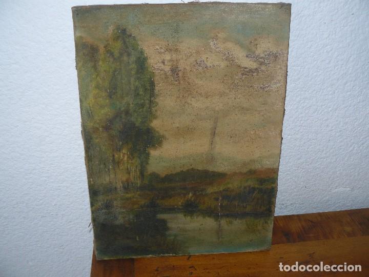 OLEO SOBRE TELA - ANONIMO - PAISAJE (Arte - Pintura - Pintura al Óleo Moderna sin fecha definida)