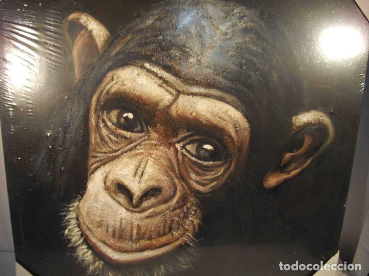 Arte: OLEO SOBRE LIENZO CHIMPANCE - Foto 2 - 192254786
