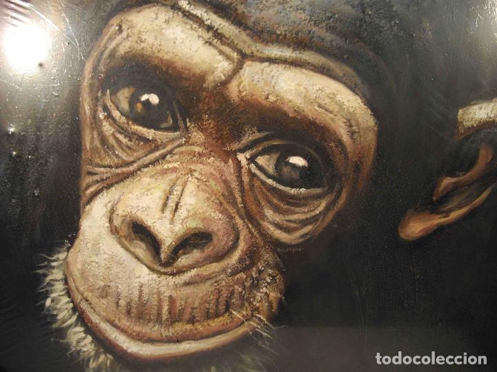 Arte: OLEO SOBRE LIENZO CHIMPANCE - Foto 3 - 192254786