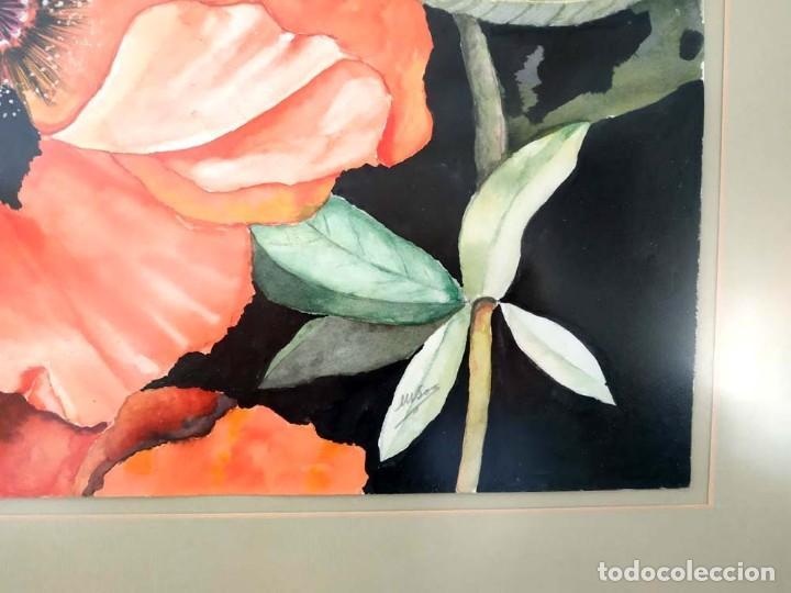 Arte: AMAPOLA LINDISIMA AMAPOLA M.SOS ACUARELA - Foto 4 - 194242251