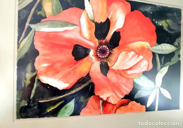 Arte: AMAPOLA LINDISIMA AMAPOLA M.SOS ACUARELA - Foto 5 - 194242251