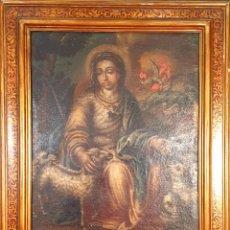 Arte: DIVINA PASTORA. ÓLEO SOBRE LIENZO. ESCUELA ESPAÑOLA. SIGLO XVIII.. Lote 194372658