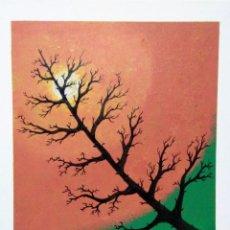 Arte: A.R FREIRE. Lote 194744043