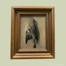 Arte: IMPRESIONANTE ESTORNINO MUERTO, JUAN PADILLA Y LARA. Lote 194867858