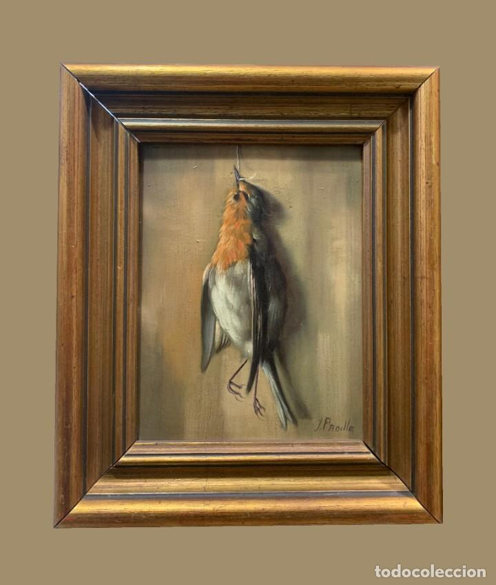 IMPRESIONANTE PETIRROJO MUERTO, JUAN PADILLA Y LARA (Arte - Pintura - Pintura al Óleo Moderna sin fecha definida)