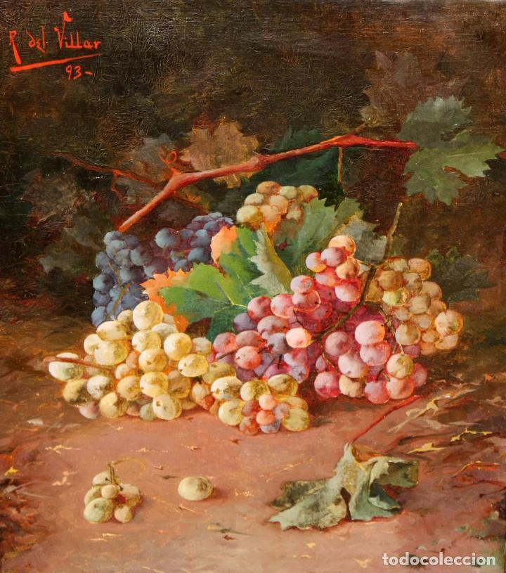 RAFAEL DEL VILLAR (JEREZ DE LA FRONTERA, 1873-1952) OLEO SOBRE TELA FECHADO DL 1893. BODEGON DE UVAS (Arte - Pintura - Pintura al Óleo Moderna siglo XIX)