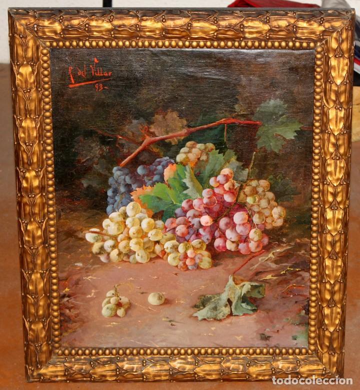 Arte: RAFAEL DEL VILLAR (Jerez de la frontera, 1873-1952) OLEO SOBRE TELA FECHADO DL 1893. BODEGON DE UVAS - Foto 2 - 195300308