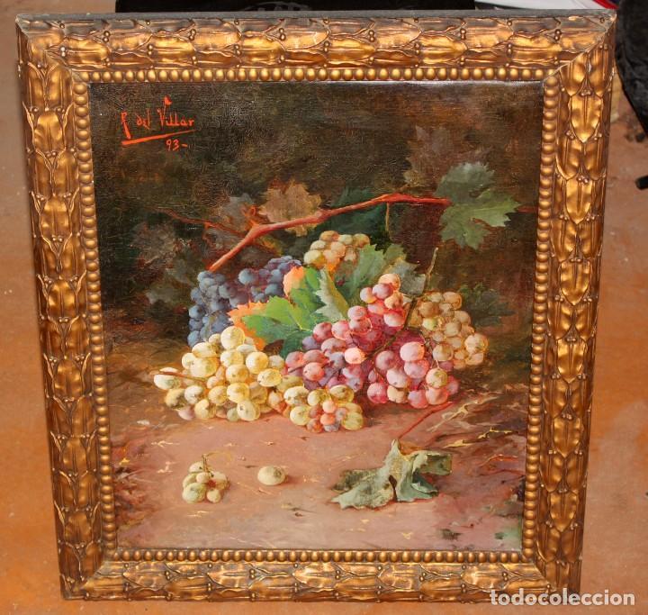 Arte: RAFAEL DEL VILLAR (Jerez de la frontera, 1873-1952) OLEO SOBRE TELA FECHADO DL 1893. BODEGON DE UVAS - Foto 3 - 195300308