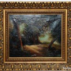 Arte: ÓLEO SOBRE LIENZO BOSQUE. Lote 195322653
