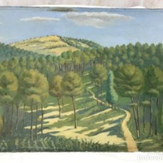 Arte: OLEO SOBRE TABLA ARBOLEDA PAISAJE FIRMADO D. PIQUERO 1944 37,5X27 CM. Lote 195524845