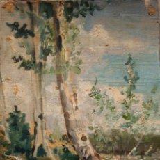 Arte: JOAN VIDAL I VENTOSA (BARCELONA, 1880 - 1966). OLEO/TELA 24 X 18 CM. ALREDEDORES DE HORTA. C. 1897.. Lote 208836428