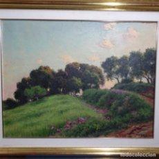 Arte: GRAN ÓLEO DE TOMÀS VIVER AYMERICH(TERRASSA 1876-1951).BIEN ENMARCADO.1928.BUEN TRAZO Y COLORIDO.. Lote 197583837
