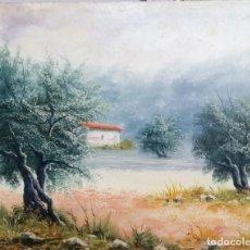 Art: PRECIOSO OLIVAR POR ZENIA. Lote 198050502