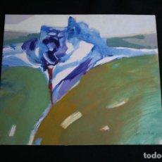 Arte: PIO COSTA BEIRO, OLEO, 0 ACRILICO SOBRE CARTON DURO, BONITO PAISAJE . FIRMADO. Lote 198643083