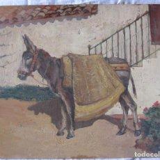 Arte: OLEO SOBRE TABLA. SIGLO XIX. BURRO EN UN PATIO. 23 X 30,5 CM. GRAN DETALLISMO. Lote 202782232