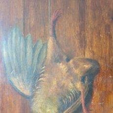Arte: MARCEL J. GINGEMBRE D'AUBÉPINE (1843-1893) - AVE MUERTA.OLEO/TABLA.FIRMADO.1881.. Lote 204422933