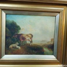 Arte: PINTURA DEL XVIII ESCUELA INGLESA. OLEO SOBRE TELA. DE LAS VACAS.. Lote 204688270