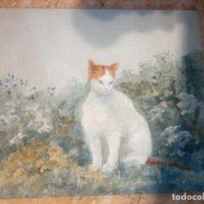 Arte: OLEO SOBRE TABLERO UN GATO. Lote 205083807