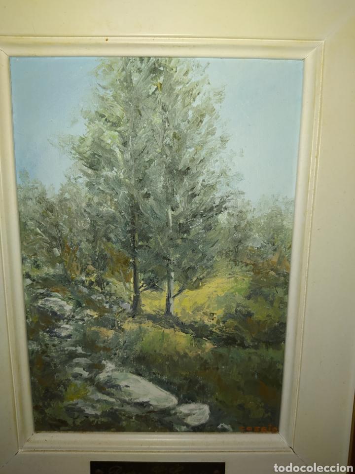 Arte: Pintor cantabro, Pedro cossio, óleo. - Foto 2 - 205385163