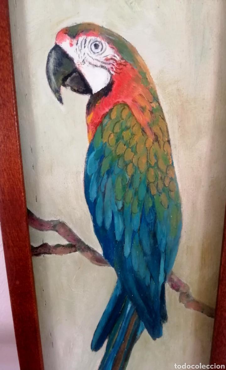 PERIQUITO (Arte - Pintura Directa del Autor)