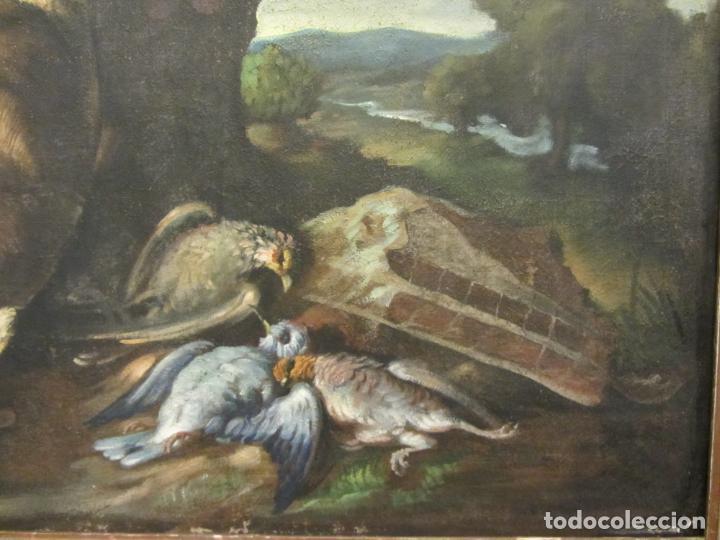 Arte: Bodegon de caza, s.XVIII-XIX, Oleo sobre tela - Foto 3 - 205772068