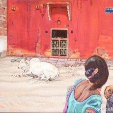 Arte: VACA SAGRADA EN JAIPUR INDIA. Lote 206238611