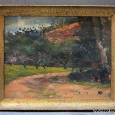 Arte: PAISAJE, PINTURA AL ÓLEO SOBRE TELA, FIRMADO MIRÓ, CON MARCO. 32X25CM. Lote 210194872