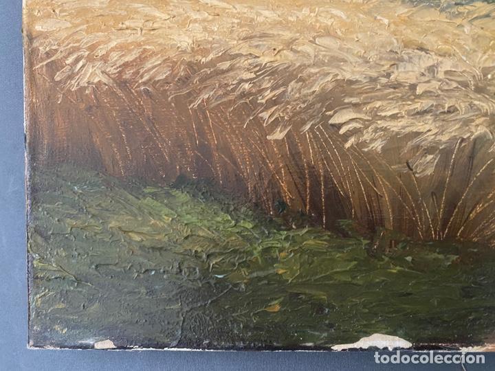 Arte: Hans Berger , SUIZA , ÓLEO LIENZO , SWISS , OIL PAINTING - Foto 9 - 189504738