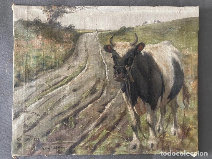 ÓLEO SOBRE LIENZO . OBRA FIRMADA A DOCUMENTAR DE 1950 APROXIMADAMENTE. TEMA RURAL (Arte - Pintura - Pintura al Óleo Contemporánea )