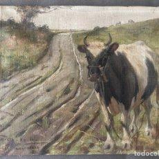 Arte: ÓLEO SOBRE LIENZO . OBRA FIRMADA A DOCUMENTAR DE 1950 APROXIMADAMENTE. TEMA RURAL. Lote 195976385