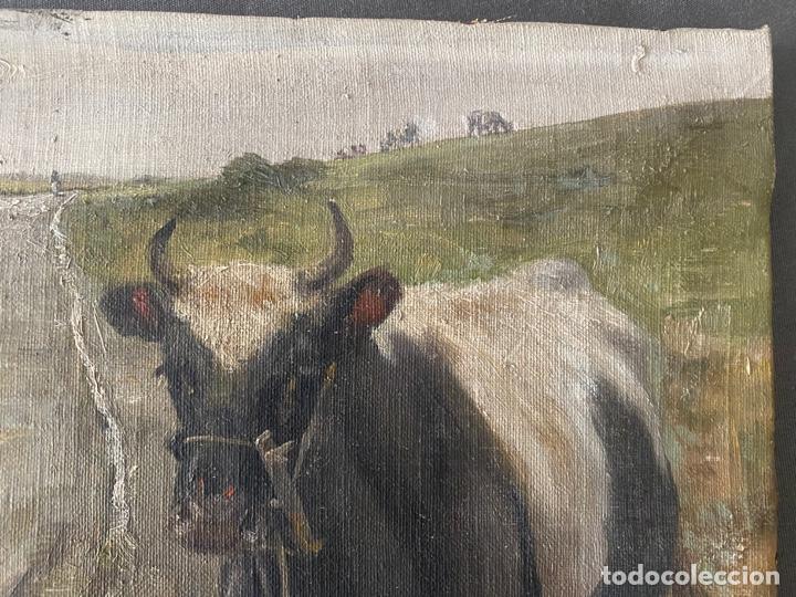 Arte: óleo sobre lienzo . obra firmada a documentar de 1950 aproximadamente. tema rural - Foto 3 - 195976385
