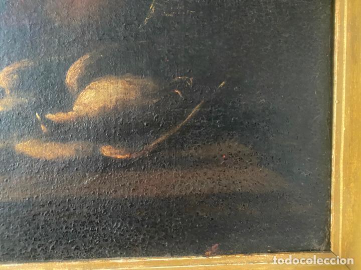Arte: bodegon del S. XVII , escuela española , sandía , uvas , pájaro - Foto 5 - 210782850