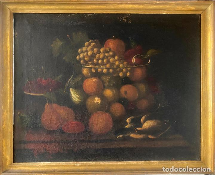 BODEGON DEL S. XVII , ESCUELA ESPAÑOLA , SANDÍA , UVAS , PÁJARO (Arte - Pintura - Pintura al Óleo Antigua siglo XVII)