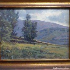 Arte: ÓLEO SOBRE TABLA DE RICARDO TARREGA VILADOMS (BCN 1904-1999).PIRINEOS CATALÁN.CAMPILLAR.. Lote 210969015