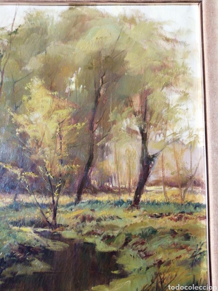 Arte: Cuadro óleo sobre tela firmado C. Vinardell - Foto 4 - 211767735