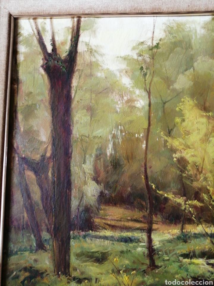 Arte: Cuadro óleo sobre tela firmado C. Vinardell - Foto 5 - 211767735
