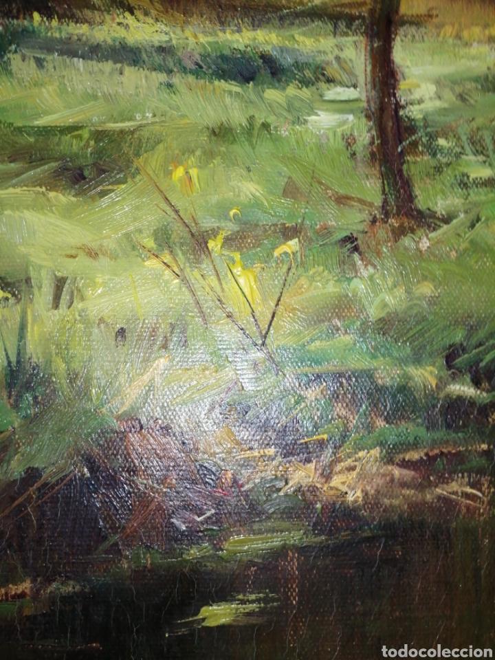 Arte: Cuadro óleo sobre tela firmado C. Vinardell - Foto 6 - 211767735