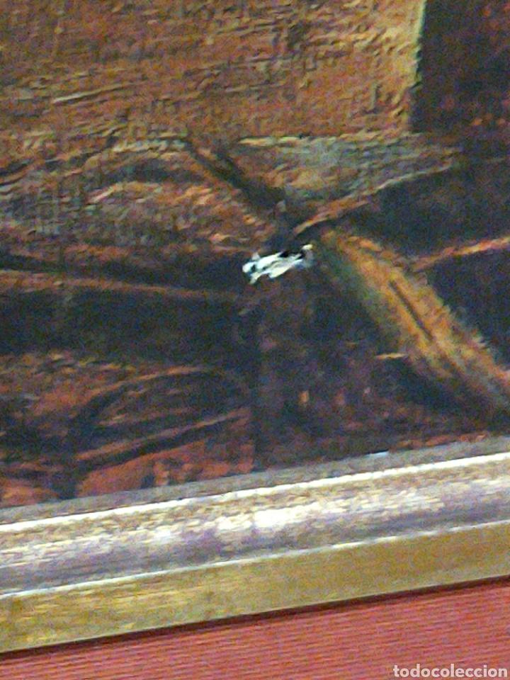 Arte: IMPRESIONANTE OLEOGRAMA SOBRE LIENZO FIRMADO M. BENNETT 1805 MEDIDAS 1.58 CM X 91 DE ALTO CON MARCO - Foto 10 - 213734981