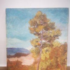 Arte: PAISAJE FIRMADO AL OLEO, BOSQUE, CON FIRMA. 27X35CM. Lote 214213721
