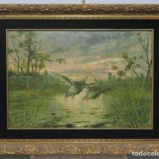 Arte: PATOS LEVANTANDO EL VUELO. OLEO S/ CARTONE. JUAN EGEA Y MARIN (MURCIA 1860-?). Lote 217383012