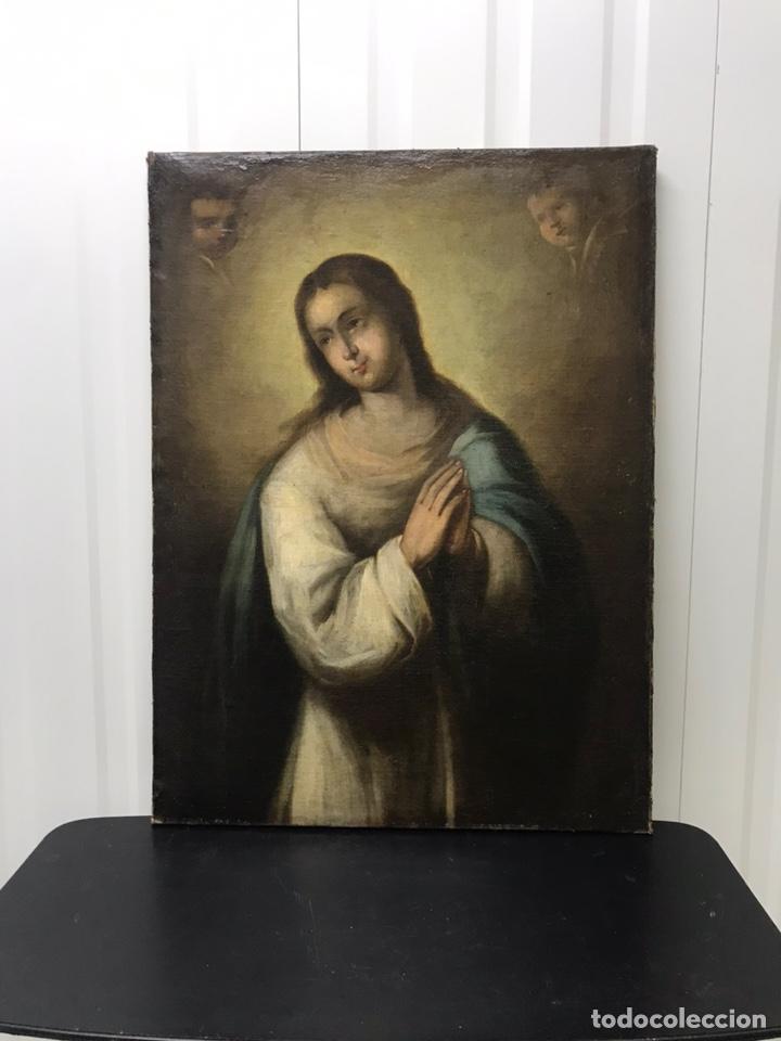 Arte: Excepcional óleo Virgen Inmaculada Siglo XVIII - Foto 2 - 217567238
