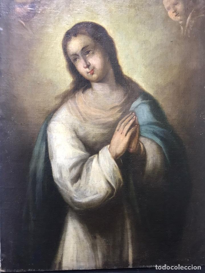 Arte: Excepcional óleo Virgen Inmaculada Siglo XVIII - Foto 3 - 217567238