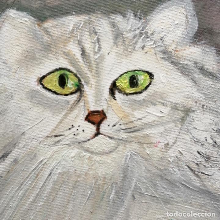 Arte: Cuadro, Pintura óleo sobre tablex entelado, gato persa blanco. 40 x 30 cmtrs. - Foto 2 - 218108752