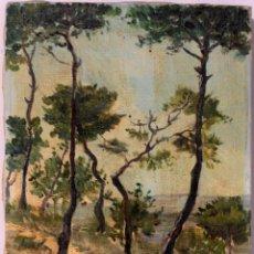 Arte: OLEO SOBRE LIENZO,PAISAJE. FIRMADO Y FECHADO. 1948, PAQUITA RODRIGUEZ. 21,5X27,5CM. Lote 218998570