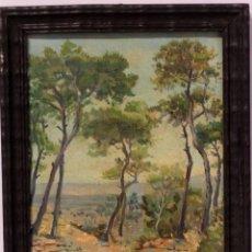 Arte: OLEO SOBRE LIENZO,PAISAJE. FIRMADO Y FECHADO. 1940S, PAQUITA RODRIGUEZ. ENMARCADO 32X26CM. Lote 219003675