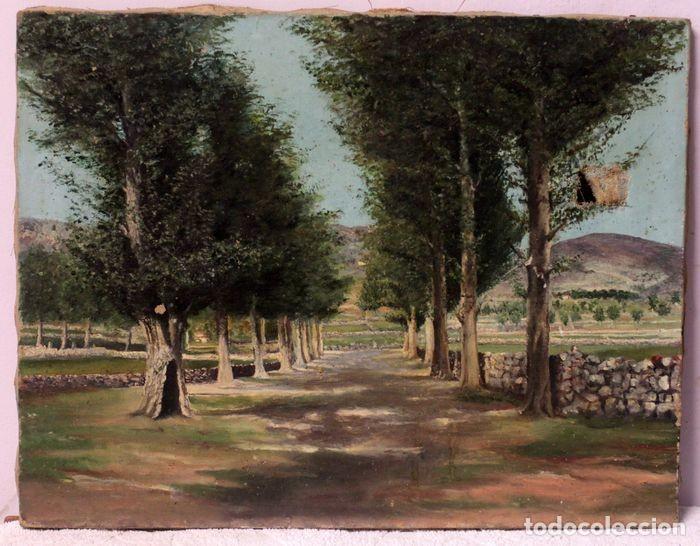 AUTORÍA DESCONOCIDA, ESCUELA ESPAÑOLA FINALES S.XIX-XX - CAMINO CON ARBOLES. 44×34 (Arte - Pintura - Pintura al Óleo Moderna sin fecha definida)