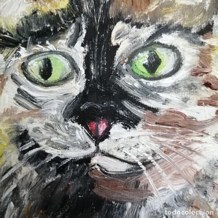 Arte: Cuadro, pintura óleo, gato arlequín. - Foto 2 - 220902172