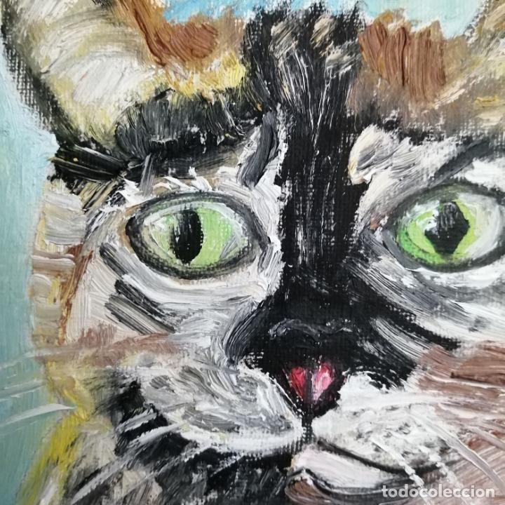Arte: Cuadro, pintura óleo, gato arlequín. - Foto 3 - 220902172