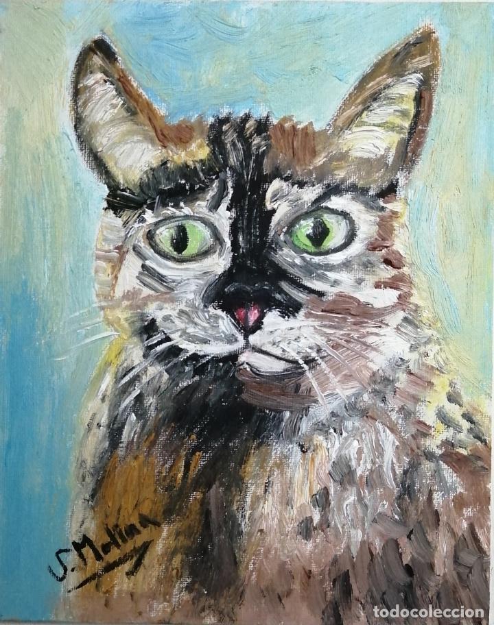 Arte: Cuadro, pintura óleo, gato arlequín. - Foto 4 - 220902172